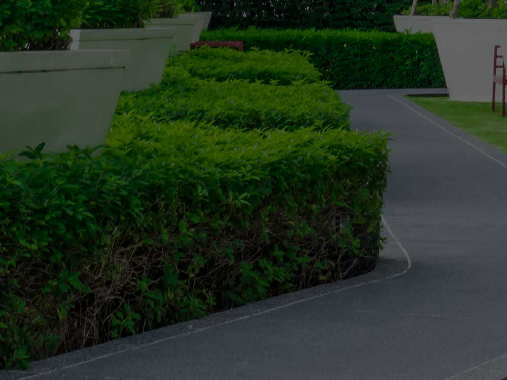 McLean Commercial Landscaping