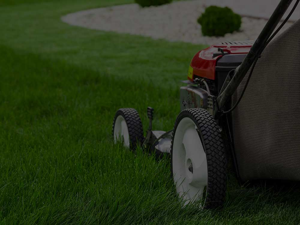 Manassas Lawn Mowing