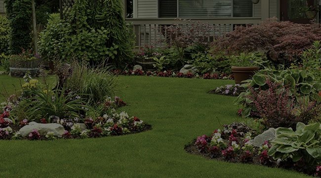Sterling Landscape Design